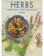 Herbs - Ann Bonar