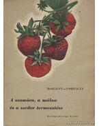 A szamóca, a málna és a szeder termesztése