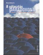 A választás paradoxona