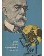 A wollsteini fizikus - Petur László
