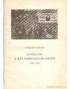 Gyöngyös a két forradalom idején (1918-1919)