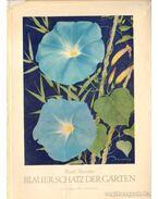 Blauer Schatz der Garten