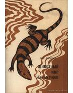 A Kara-kum állatvilága (Животный мир Каракумов)