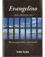 Evangelino ahol a Krisztus van - Bizonyságtételek a börtönből