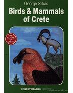 Birds & Mammals of Crete