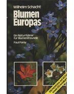 Blumen Europas