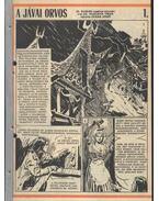 A jávai orvos (Füles 1986. 9-29 szám 21 rész)
