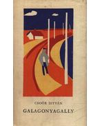 Galagonyagally
