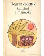 Hogyan építettek kunyhót a majmok? - Sulyok Magda