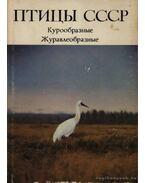 A Szovjetúnió madarai (Птицы СССР)