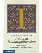 Irodalmi feladatgyűjtemény -  A XIX. század magyar és világirodalma