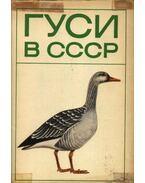 Ludak a Szovjetúnióban (Гуси в СССР)