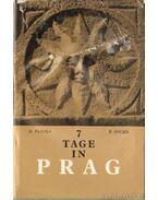 7 Tage in Prag