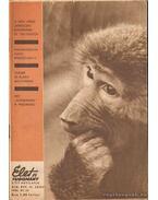 Élet és tudomány XIX. évf./47. szám - 1964. XI. 20.