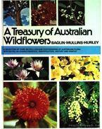 The treasury of Australian wildflowers