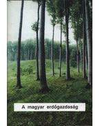 A magyar erdőgazdaság