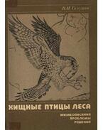 Az erdő ragadozó madarai (Хищные птицы леса)