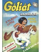 Góliát kalandjai 14. (A világító lovas; A gumibalta; A medvevadászat; Góliát játékai)