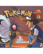 Pokémon 1.