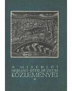 A Miskolci Herman Ottó múzeum Közleményei 18