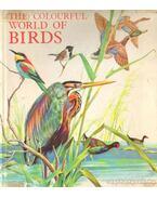 The Colourful World of Birds (A madarak színes világa)