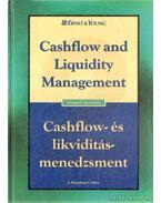 Cashflow- és likviditás-menedzsment