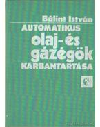 Automatikus olaj- és gázégök karbantartása
