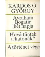 Avraham Bogatir hét napja; Hová tűntek a katonák?; A történet vége