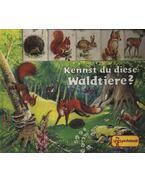 Kennst du diese Waldtiere?