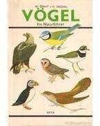 Vögel (német)