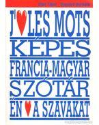 Francia-Magyar tematikus képes tanuló-szótár