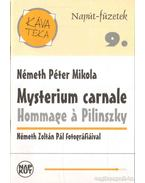 Mysterium carnale