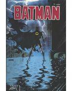 Batman 1991/1. 13. szám