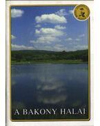 A Bakony halai