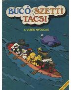 Bucó Szetti Tacsi (A téli randevú)