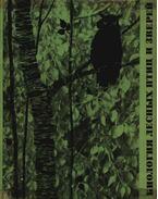 Az erdő állatainak és madarainak biológiája (Биология лесных птиц и зверей)