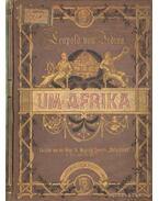 Um Afrika (német) - Leopold Von Jedina