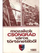 Mozaikok Csongrád város történetéből 1985