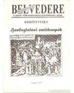 Belvedere Meridionale 1997. - Nagy Tamás, Kósa Kinga, Nyulassy Ágnes,  JANCSÁK Csaba