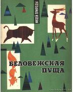 A bialowieazai rengeteg (Беловежская пуща)