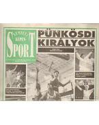 Nemzeti Képes Sport 1993. IV. évf. (teljes)