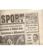 Nemzeti Sport 1993. október (hiányos)