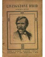 Livingstone Dávid Afrika hőse
