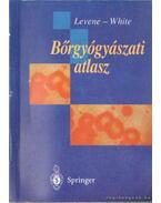 Bőrgyógyászati atlasz