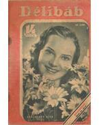 Délibáb 1941. XV. évf. 29. szám