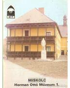 Miskolc - Herman Ottó Múzeum 1.