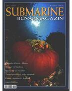 Submarine 2002. ősz