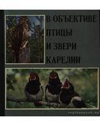Objektívben Karjala madarai és vadai (В объективе птицы и звери Карелии)