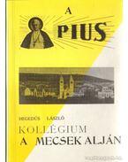 A Pius  Kollégium a Mecsek alján
