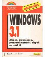 Windows 3.1 - Cserhalmi Zsolt